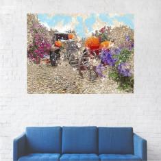 Tablou Canas, Pictura Artistica Masina in Natura - 20 x 25 cm
