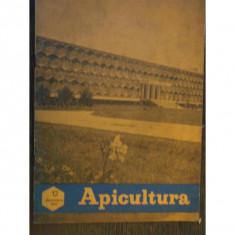 REVISTA APICULTURA NR.12/1971
