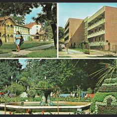 BUZIAS – VEDERE – HOTELUL PARC – PARCUL - CP CIRCULATA #colectosfera
