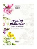 Regatul plantelor. Carte de colorat