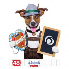 Caiet A5, 48 file, aritmetica, Herlitz Cool Dog
