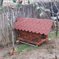 Cusca caine talie mare din lemn