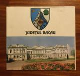 Monografie Județul BACĂU (1996) - Muzeul de Artă și Etnografie Bacău