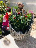 ghivece flori unicat