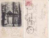 Casa Regala -Sinaia-Cuibul Printesei- clasica, rara