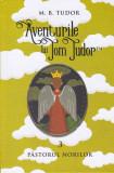 Aventurile lui Tom Tudor (Vol.III) Păstorul norilor