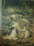 CAINII NOSTRII , NR. 2 de ZOE DUMITRESCU-BUSULEANGA ... NICOLAE STRAVOIU , 1989