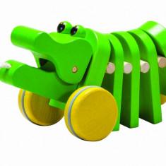 Crocodilul care danseaza
