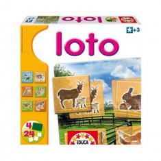 Joc Loto cu Animale