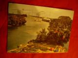 Ilustrata Delta Dunarii circulat 1985