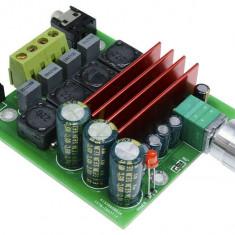 Amplificator Audio Mono clasa D 100W nou