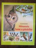 Minunata lume a păsărilor -Susanne Riha
