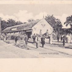 LOVRIN TARG ,TIMIS ,ROMANIA., Necirculata, Fotografie, Timisoara