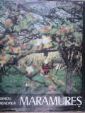 MARAMURES de SANDU MENDREA 1982   arhiva Okazii.ro