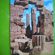 HOPCT 53016 COLOANELE PAPIRUS  -VALEA REGILOR-EGIPT-NECIRCULATA