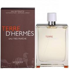 Hermes Terre D'Hermes Eau Trés Fraiche EDT Tester 125 ml pentru barbati