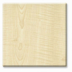 Blat de masa werzalit Akcaagac GENTAS WEZALIT rotund 70cm (4206)