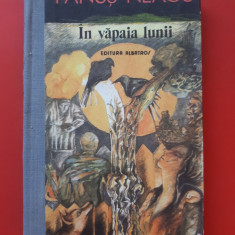 DINCOLO DE NISIPURI ACASA × FANUS NEAGU