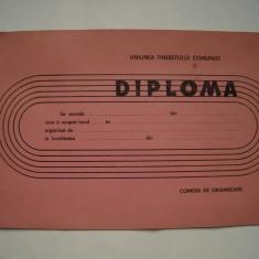 Diploma sportiva Uniunea Tineretului Comunist, necompletata