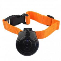 Zgarda cu camera foto/ video pentru caini sau pisici