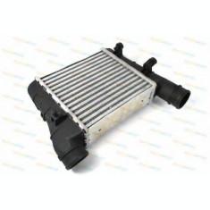Radiator intercooler AUDI A4 Cabriolet (8H7, B6, 8HE, B7) (2002 - 2009) THERMOTEC DAA001TT