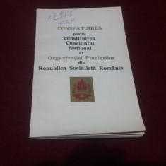 CONSFATUIREA PT CONSTITUIREA CONSILILULUI NATIONAL AL ORGANIZATIEI PIONIERILOR