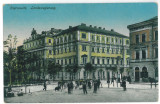 2326 - CERNAUTI, Bucovina, Market - old postcard - unused