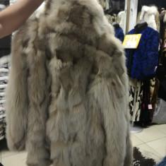 Haina blana vulpe