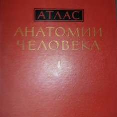 Carte veche Medicina Rusa 1972,ANATOMIA UMANA IN IMAGINI,SISTEMELE CORPULUI,TG