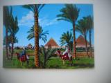 HOPCT 74821 BEDUINI IN COSTUME LA PIAMIDELE GIZA   EGIPT -NECIRCULATA