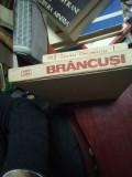 Barbu Brezianu - Brancusi in Romania