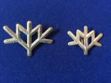 Insigna militara - Insemne militare - Vanatori de munte (argintie)