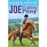 Joe and the Lightning Pony - Victoria Eveleigh