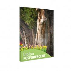 Tablou fosforescent Lalele si copaci batrani