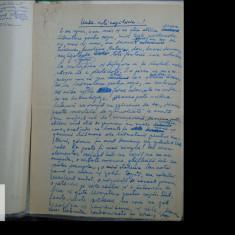 Manuscris/ Articol scris si semnat de Ion Dodu Balan - 6 pag