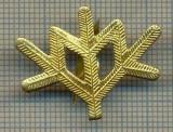 Y 1805 INSIGNA - MILITARA -SEMN DE ARMA -VANATORI DE MUNTE  -PENTRU COLECTIONARI