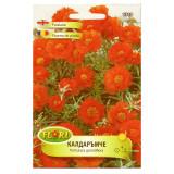Cumpara ieftin Seminte flori, Florian, Floare de piatra orange, 0.5 g