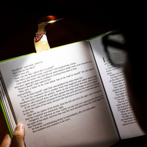 Lampa pentru citit flexibila, Caine, TG by AleXer, 8190112, Plastic, Maro, saculet si lupa incluse