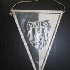 Jiul Petrosani - fanion