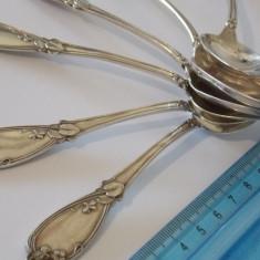 Set lingurite argint -9003