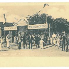 4806 - LOVRIN, Arad, Market, Romania - old postcard - unused