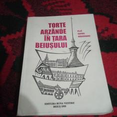 Torte arzande in tara Beiusului-Prof.Gavril Hadareanu