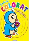 Carte de colorat pentru prichindei  , Girasol
