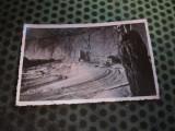 cp sanatoriul moroieni inct album 144
