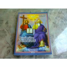 RUGA CATRE DUMNEZEU - CECILIA CIUCA