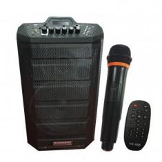 Boxa activa tip troler Temeisheng, port USB, suport card SD, joc lumini, telecomanda