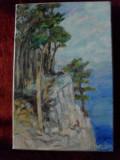 La malul marii 3-pictura ulei pe panza