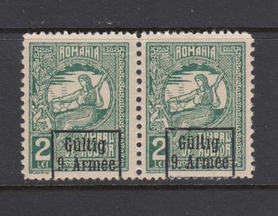 ROMANIA 1917 1918 OCUPATIA GERMANA 2LEI PERECHE CU EROARE  MNH foto