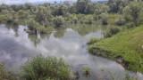 vand urgent teren extravilan