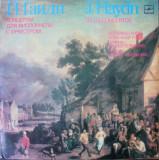 Disc Vinyl Vinil  J.Haydn - Cello Concertos -  c10 17993 94, Melodia